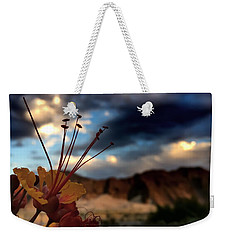Weekender Tote Bag featuring the photograph Sunrise La Quinta by Chris Tarpening