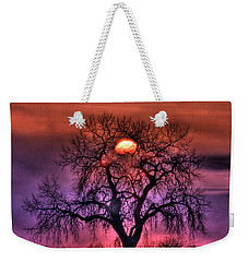 Sunrise Through The Foggy Tree Weekender Tote Bag by Scott Mahon