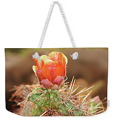 Sunset In The Deserts Weekender Tote Bag by Elaine Malott
