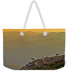 Weekender Tote Bag featuring the photograph Sunset On The Edge by Scott Mahon