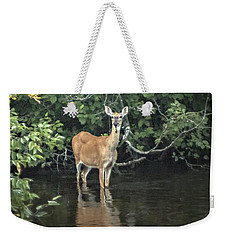 Sunset River Doe Weekender Tote Bag