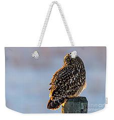 Sunset Short-eared Owl Weekender Tote Bag