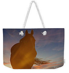 Weekender Tote Bag featuring the photograph Sunset Silhouette by Carol Lynn Coronios