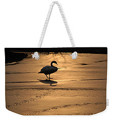 Weekender Tote Bag featuring the photograph Sunset Swan by Richard Bryce and Family
