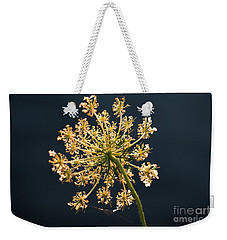 Weekender Tote Bag featuring the photograph Sunset's Glow by Rebecca Davis