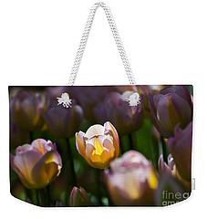 Weekender Tote Bag featuring the photograph Sunshine Tulips by Angela DeFrias
