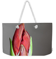 Super Bud Weekender Tote Bag by Betty-Anne McDonald