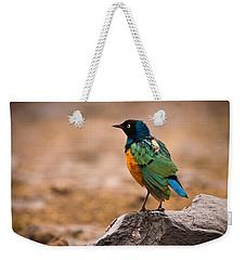 Superb Starling Weekender Tote Bag by Adam Romanowicz