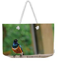 Superb Starling Weekender Tote Bag