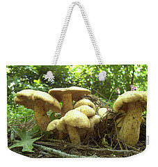 Surprise Fungi In Gibbs Garden Weekender Tote Bag