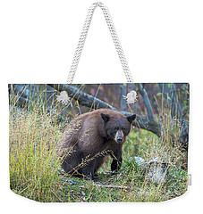 Surprised Bear Weekender Tote Bag by Scott Warner
