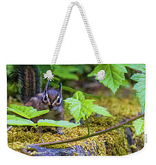 Weekender Tote Bag featuring the photograph Surprised Chipmunk by Jonny D