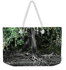 Weekender Tote Bag featuring the photograph Survival Of The Fittest by Debra Forand