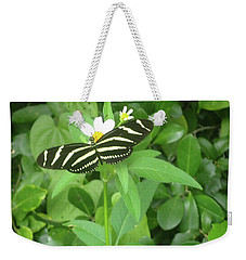 Swallowtail Butterfly On Leaf Weekender Tote Bag