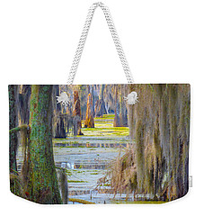 Swamp Curtains In February Weekender Tote Bag
