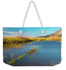 Weekender Tote Bag featuring the photograph Swamp by Jivko Nakev