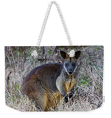 Weekender Tote Bag featuring the photograph Swamp Wallaby  by Miroslava Jurcik