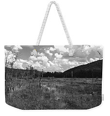 Weekender Tote Bag featuring the photograph Swampoem by Curtis J Neeley Jr