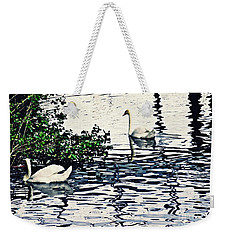 Weekender Tote Bag featuring the photograph Swan Family On The Rhine 3 by Sarah Loft