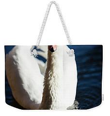 Swan Posing Weekender Tote Bag by Teemu Tretjakov