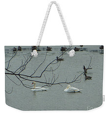 Swans With Geese Weekender Tote Bag