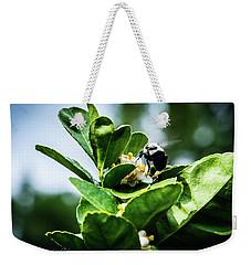 Sweet Bee Weekender Tote Bag by Stefanie Silva