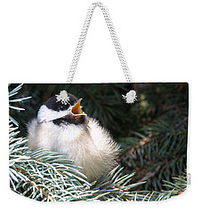Sweet Chickadee Weekender Tote Bag