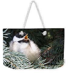 Sweet Chickadee Weekender Tote Bag by Angie Rea