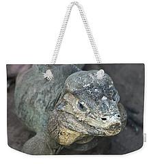 Weekender Tote Bag featuring the photograph Sweet Face Of Rhinoceros Iguana by Miroslava Jurcik
