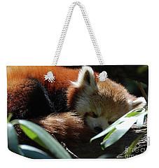Sweet Sleeping Red Panda Bear Weekender Tote Bag by DejaVu Designs