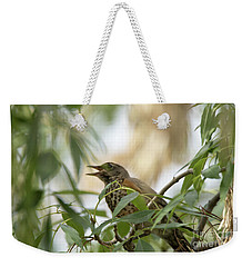 Weekender Tote Bag featuring the photograph Sweet Song by Anne Rodkin