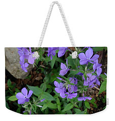 Sweet Williams In The Spring Weekender Tote Bag