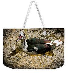 Swimming In Gold Wildlife Art By Kaylyn Franks Weekender Tote Bag