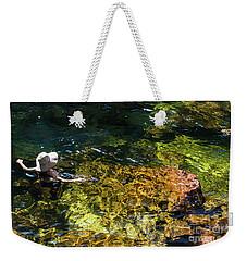 swimming in the Buley Rockhole waterfalls Weekender Tote Bag