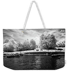 Swimming With Cows Weekender Tote Bag by Paul Seymour