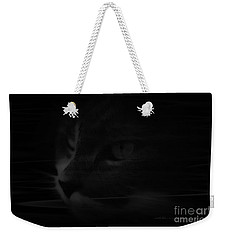 Weekender Tote Bag featuring the photograph Swirling Sully by Vicki Ferrari