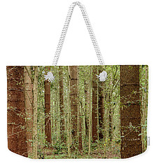 Weekender Tote Bag featuring the photograph Sylvan Beauty by Werner Padarin