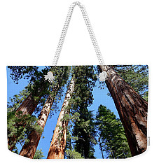Sylvan Giants 2 Weekender Tote Bag