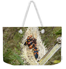 Weekender Tote Bag featuring the photograph Symbiosis by Joel Deutsch
