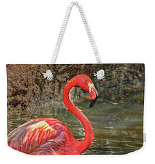 Weekender Tote Bag featuring the photograph Symbol Of Florida by Hanny Heim