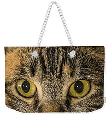 Symmetrical Cat Weekender Tote Bag