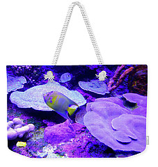 Weekender Tote Bag featuring the photograph Ta Purple Coral And Fish by Francesca Mackenney