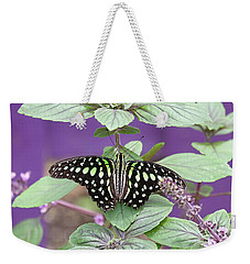 Tailed Jay Butterfly In Puple Weekender Tote Bag
