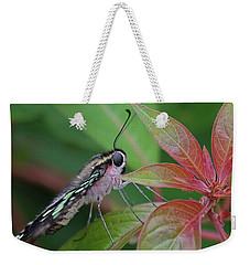 Tailed Jay Butterfly Macro Shot Weekender Tote Bag