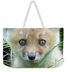 Take Me Home Weekender Tote Bag by Everet Regal