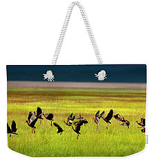 Weekender Tote Bag featuring the photograph Take Off by Leland D Howard