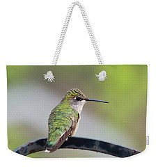 Taking A Rest Weekender Tote Bag