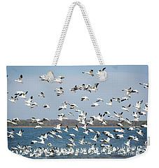 Taking Flight IIi Weekender Tote Bag