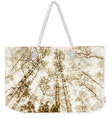 Weekender Tote Bag featuring the photograph Tall Aspens by Elena Elisseeva
