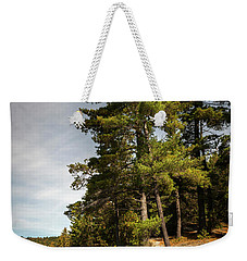 Weekender Tote Bag featuring the photograph Tall Pines On Lake Shore by Elena Elisseeva